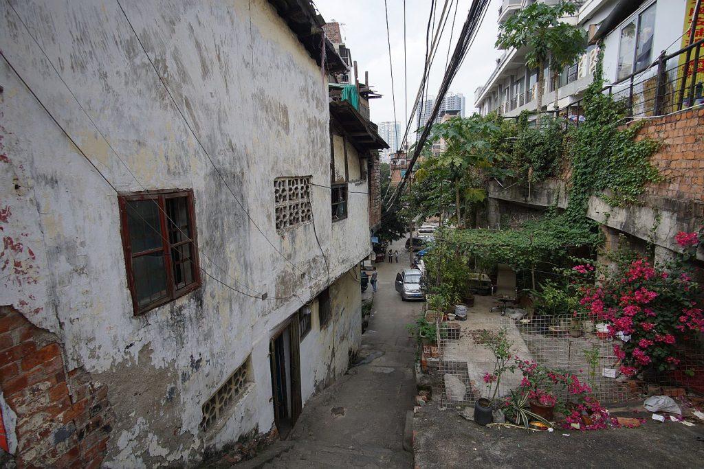 Może biednie w tym Nanning, ale za to egzotycznie. Między budynkami widać rosnącą papaję.