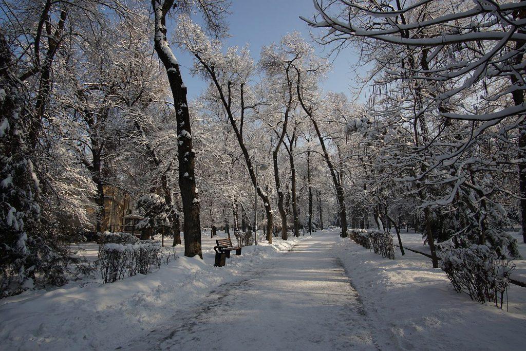 Park w Almatach.